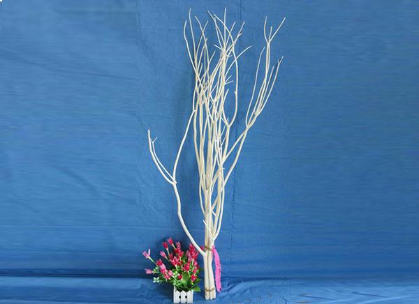 Three Branch